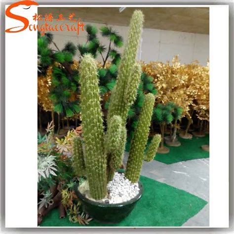 wholesale garden supplies all types of cactus names plants