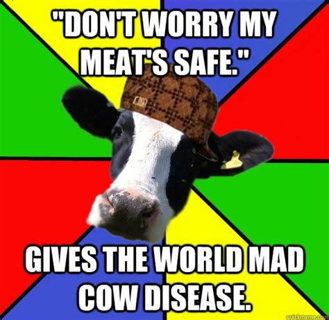 Mad Cow Disease Meme - 84 best flying cow images on pinterest cow so funny and cattle