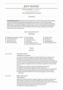 amazing the best sales resumes ever picture collection With best sales resume ever