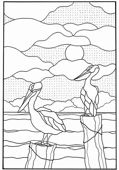 Coloring Stained Glass Pages Nature Pattern Adult