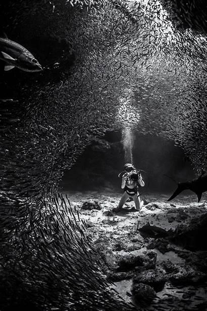 Underwater Photographer Ken Kiefer Mercury Runner Ocean