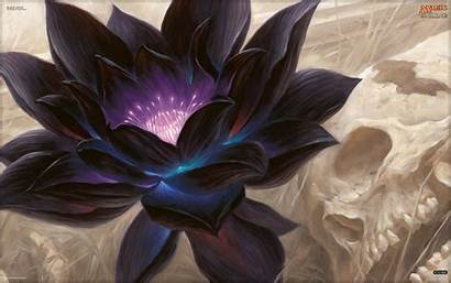 Lotus Magic Wallpapers Gathering Backgrounds Rahn Chris