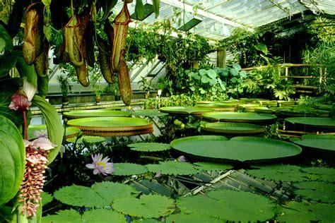 Botanischer Garten Berlin Tropical by Tourist In Berlin