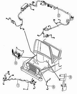 2015 Jeep Wrangler Wiring  Headlamp  Export   Front End