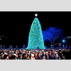 National Christmas Tree New York  Best Template Collection