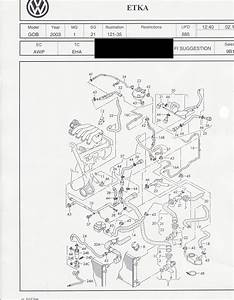 2000 Vw Jetta Serpentine Belt Diagram