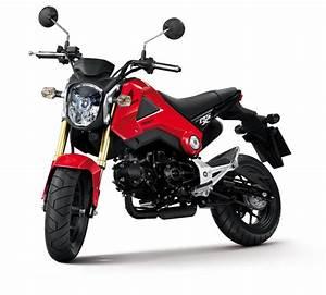 Petite Moto Honda : une petite moto pour s 39 amuser la honda msx 125 roues libres ~ Mglfilm.com Idées de Décoration