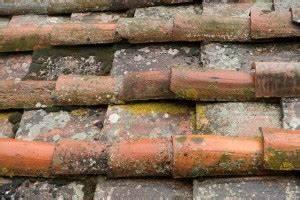 Moos Auf Dem Dach : endlich ein moosfreies dach limalg annas ~ Watch28wear.com Haus und Dekorationen