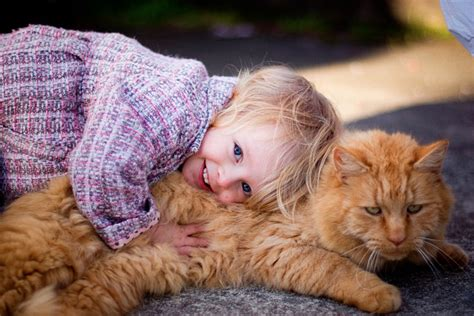 Haustiere Fuer Kinder by Learn More About The Benefits Of Pets For Children With