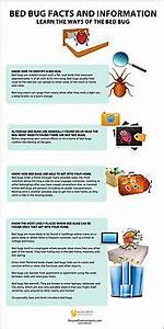 Personal injury law attorney a listly list for Bed bug lawyer