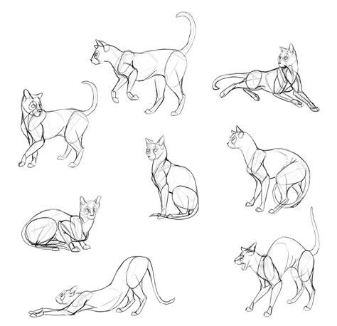 draw cats step  step  monika zagrobelna