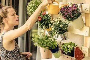 Welche Blumen Kann Man Essen : das spiel der jahreszeiten wann sollte ich welche blumen ~ Watch28wear.com Haus und Dekorationen