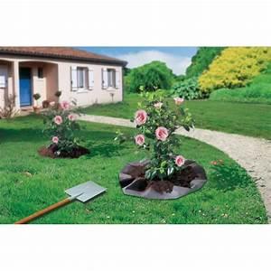 Geotextile Mr Bricolage : feutre de plantation pour arbustes terre de bruy re 1 50 x ~ Melissatoandfro.com Idées de Décoration