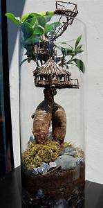 Terrarium Plante Deco : terrarium maison dans larbre cosyst me terrarium bocal ~ Dode.kayakingforconservation.com Idées de Décoration