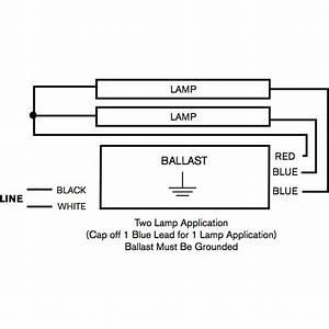Diagram  2 Light F96t12 Ballast Wiring Diagram Full