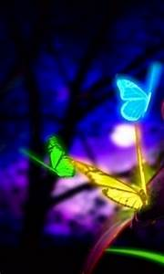 17 Best images about neon butterflies on Pinterest