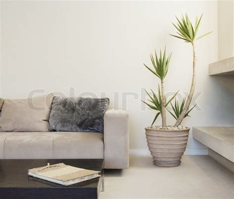 Images Of Living Room Plants by Modern Living Room With Potted Plant Stock Photo