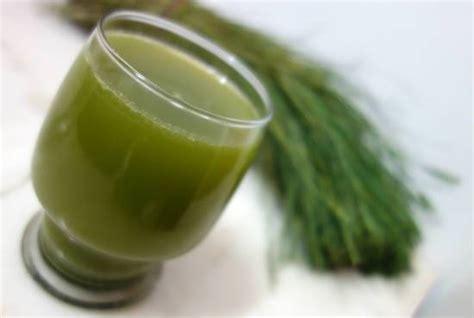 Arugampul Juice (bermuda Grass Juice) Recipe