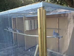 Fabrication D Une Voliere Exterieur : construction d 39 une voli re palombes page 3 ~ Premium-room.com Idées de Décoration