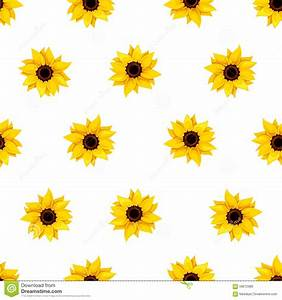 Seamless Pattern With Sunflowers On White. Vector ...