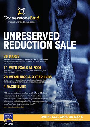 2020 Cornerstone Unreserved Reduction Online Auction