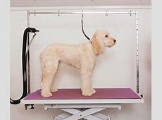 Hydraulic Dog Grooming Table Reviews THE LUCKY DESIGN