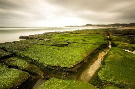 landscape, Sea, Green, Nature Wallpapers HD / Desktop and ...