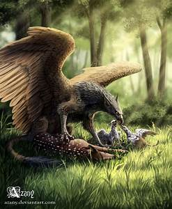 Griffin by Azany | Fantasy | Pinterest | Mythical ...
