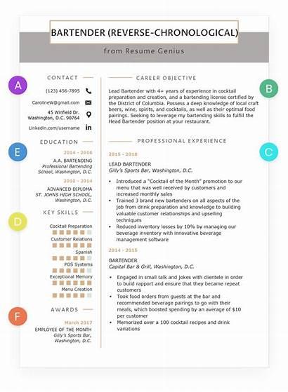 Resume Chronological Write Format Writing Reverse Guide
