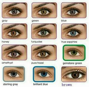 Eye Color Rarity Chart All About The Human Eye Color Chart