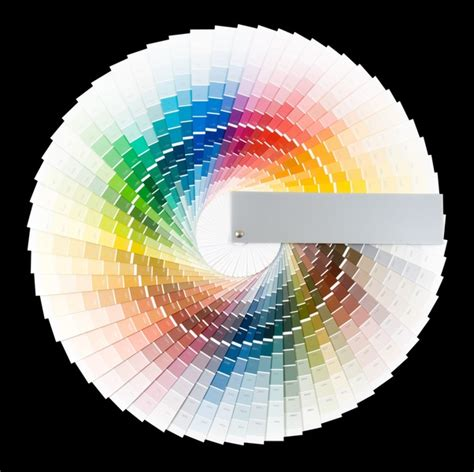 color wheel paint casual cottage