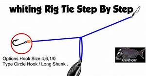 13 Best Rigs For Whiting Fishing Made Easy Images On