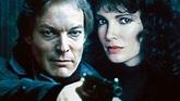 The Bourne Identity (TV Series 1988)