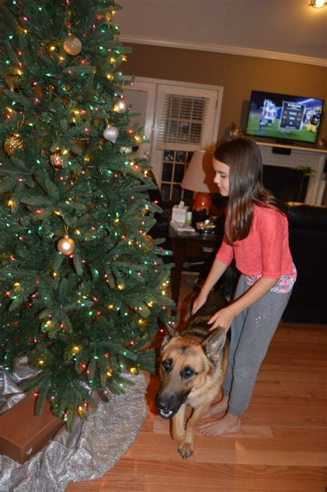 beautiful artificial christmas trees  lights tree