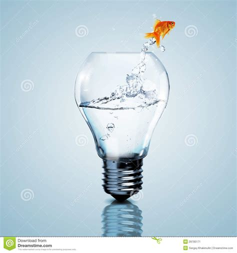 inside of a light bulb gold fish inside an electric bulb stock image image