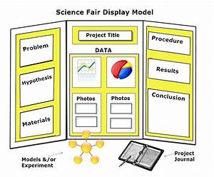 science project board layout examples they are very clear when
