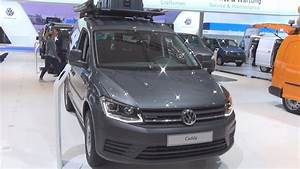Volkswagen Caddy Trendline 2 0 Tdi Eu6 Scr 90 Panel Van