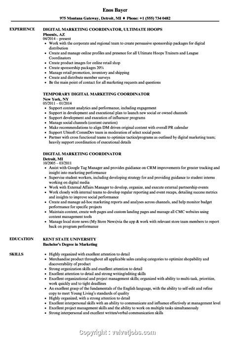 new marketing coordinator cv digital marketing coordinator resume sles velvet gfortran
