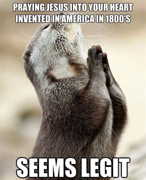 Memes Pics Funny - otter pray funny otter memes pics bajiroo com