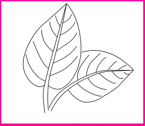 Coloring Leaf by Leaf Coloring Pages Printable Activity Shelter