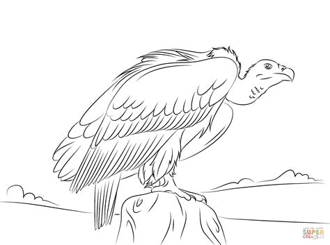 turkey vulture nfl eagles coloring pages print