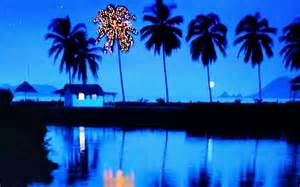 lights in the palm trees a true caribbean christmas nautical gifts and decorations