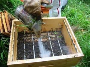 Comment Faire Une Ruche : diviser une ruche l 39 abeille du forez ~ Melissatoandfro.com Idées de Décoration