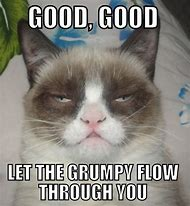 Grumpy Cat Meme Good