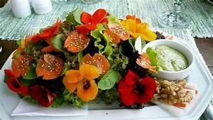 Wo Kann Man Günstig Küchen Kaufen : wo kann man essbare bl ten kaufen kochen pflanzen backen ~ Bigdaddyawards.com Haus und Dekorationen
