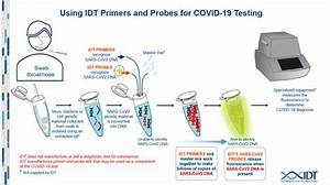 Coronavirus How Testing For Covid Wiring Diagram