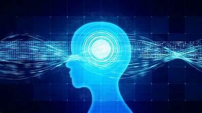Neuroscience Neurology Wallpapers Processadores Dos Ia Era