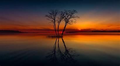 4k Lake Sunset Nature Tree Horizon Reflection