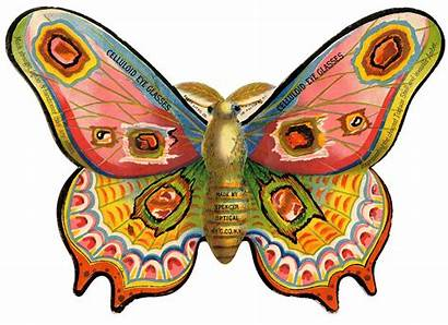 Moth Graphics Colorful Fairy Butterfly Advertising Graphic