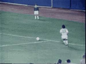 new york cosmos on Tumblr